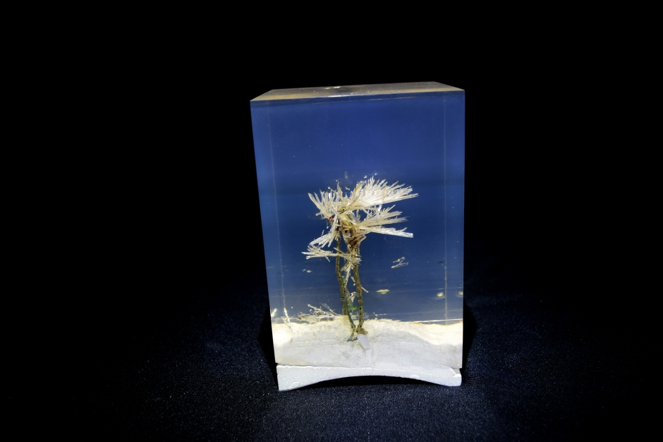 Cristal 03 - 03 Reloj de pulso, cristalizaciones, resina 11 x 9.5 x 17.5 cm Víctor Pérez-Rul México 2014